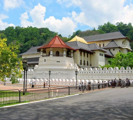 Sri Lanka Honeymoon Tour: the Romantic Getaway