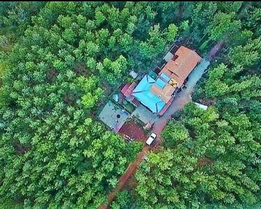Forest View Homestay in Chikmagalur