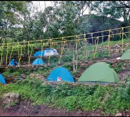 Camping with Activities in Munnar