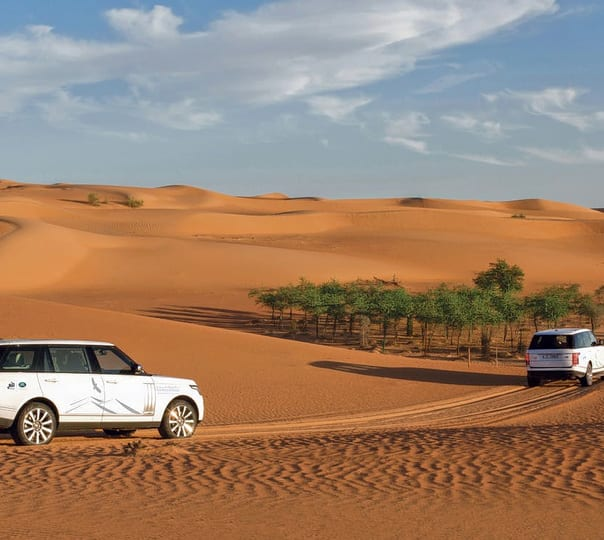 Desert Safari with Barbecue Dinner in Dubai