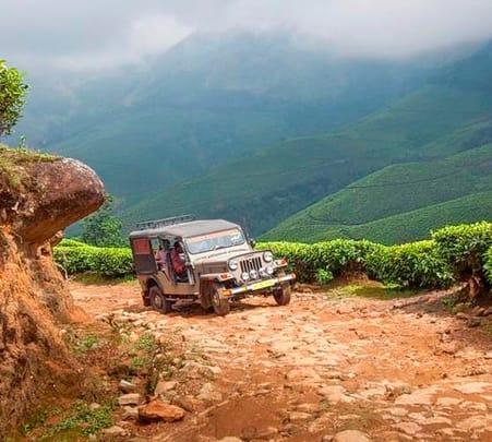 Jeep Safari In Munnar