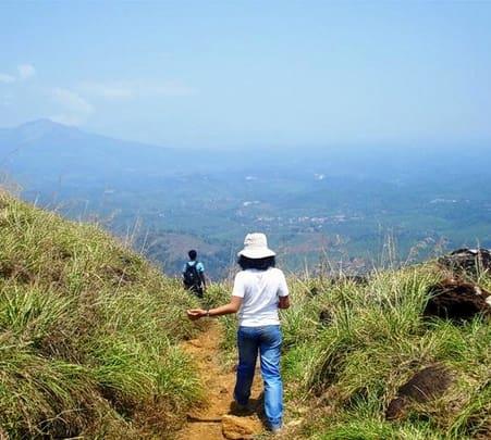 Wayanad Trekking Trail
