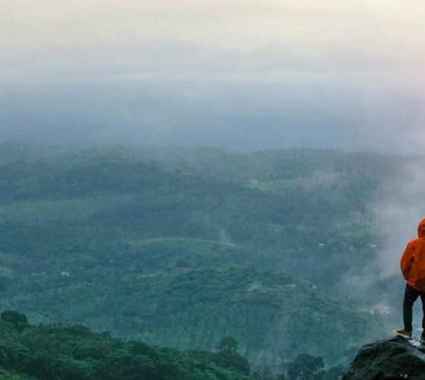 Trekking and Forest Camping in Munnar