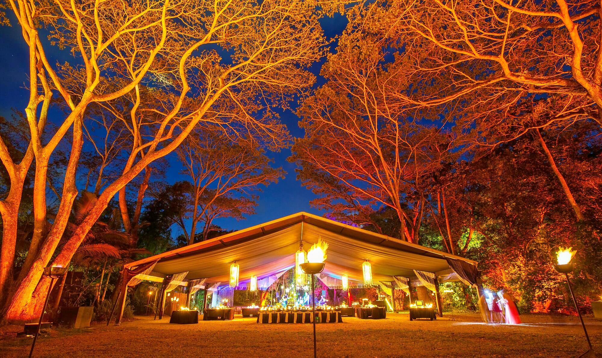 1536242111_flames-of-the-forest-rainforest-dinner-1.jpg