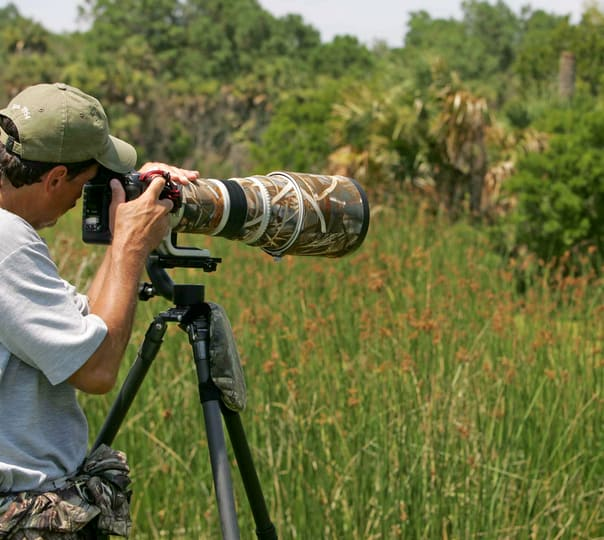 One Day Wildlife Photography Tour at Calangute