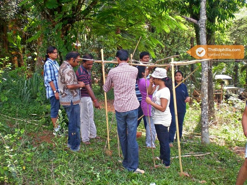 Jungle-survival-1__team_building_activity.jpg