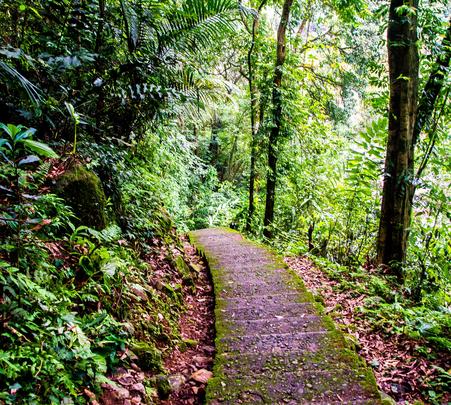 Hiking Tour in Meghalaya