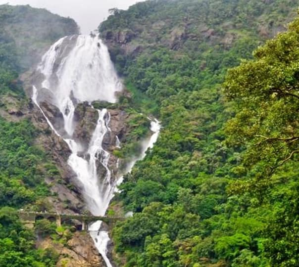 Thrilling Experience to Dudhsagar Waterfall