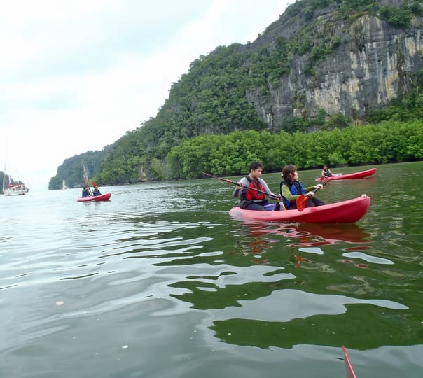 Kayaking Kilim River in Langkawi