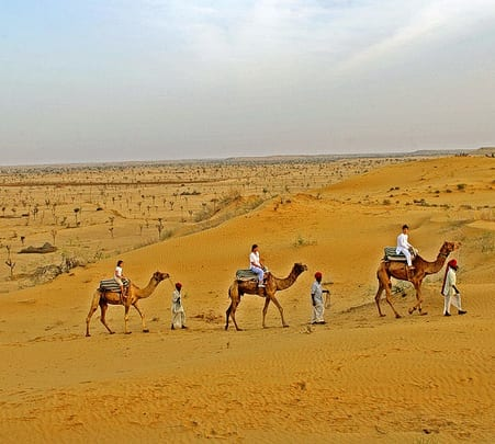 Camel Safari and Camping near Bikaner