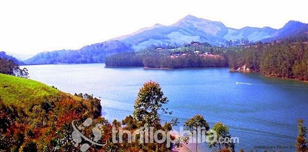 Munnar_lake_01_kerala.jpg