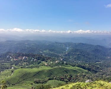 7 Hills Full Day Trekking at Lakshmi Hills, Munnar
