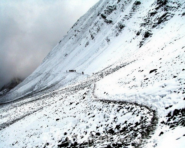 Sham_valley_trek__ladakh_(1).jpg