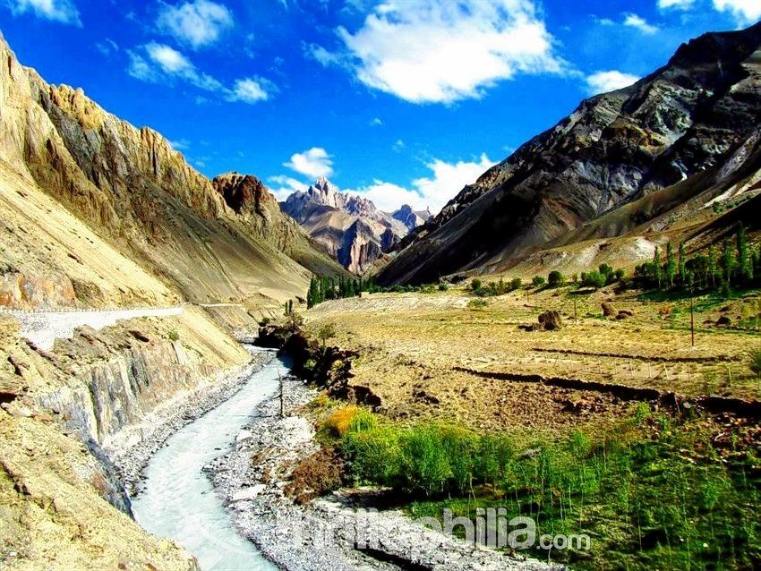 Darcha_padum_trek__ladakh_(4).jpg