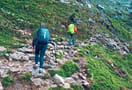 1544972295_triund_trekking_and_camping_4.jpg