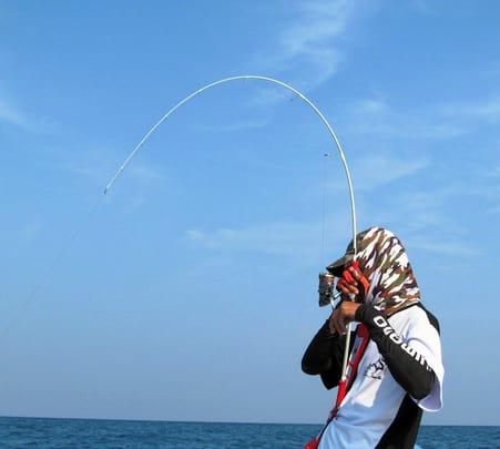 Private Sea Hawk Squid Catching