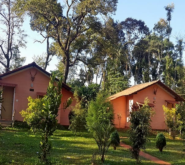 Coffee Estate Stay In Coorg
