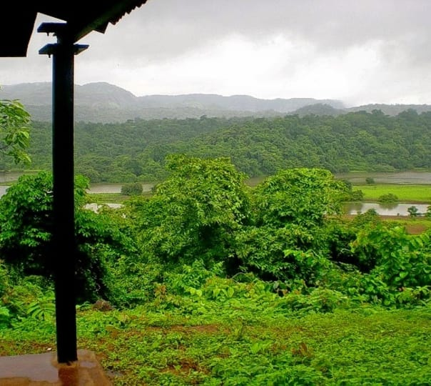 Saturday Nature Break (monsoon) Kundalika Rafting Camp