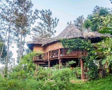 Offbeat Estate Stay near Karada