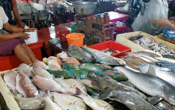 Pasar-ikan-kedonganan5.jpg