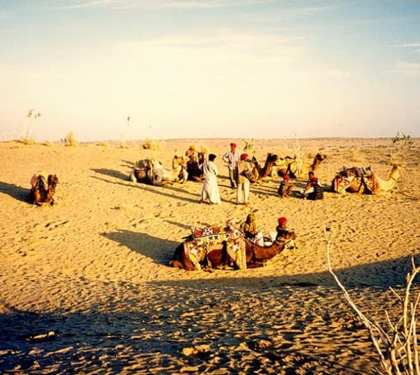 Experience Desert Life with Narayan Resort