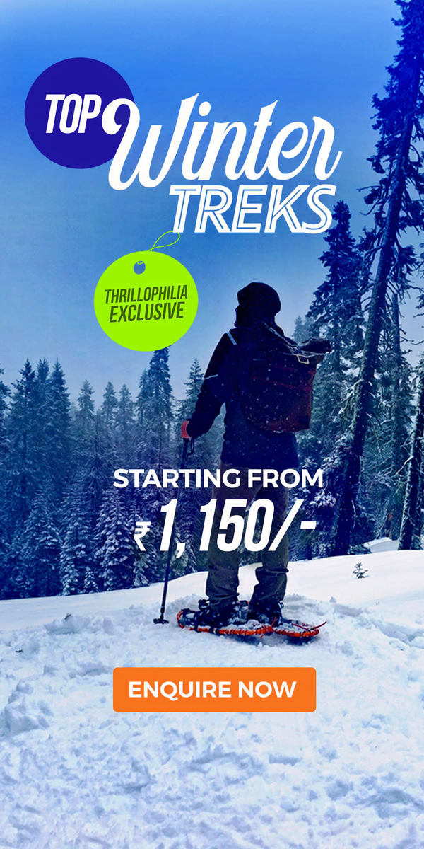 1578568307_winter_treks.jpg