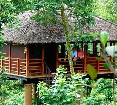 Tree House & Jacuzzi Villa at Carmelia Haven, Thekkady, Kerala