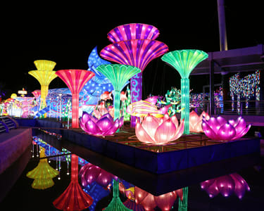 Dubai Garden Glow Tickets Flat 33% off