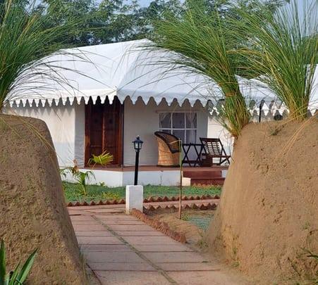 Resort Stay at Ranthambore