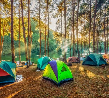 Camping Experience near Satpura Tiger Reserve, Madhai
