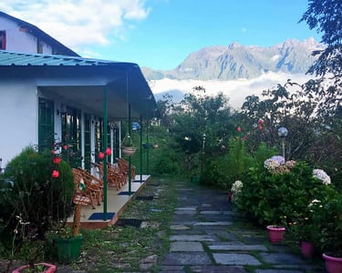 Stay Amidst Mighty White Mountains in Auli