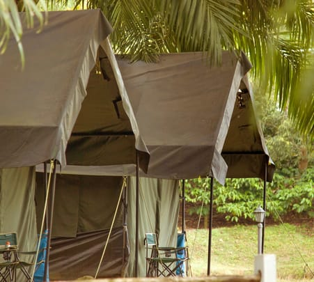 Coffee Farm Camping in Coorg