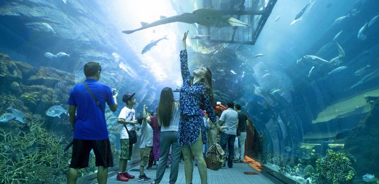 1540534667_Dubai_Underwater_Zo ...