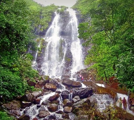 Amboli Jungle Trek