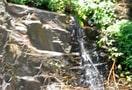 Chickmagalur-trekking_9522578228_o.jpg