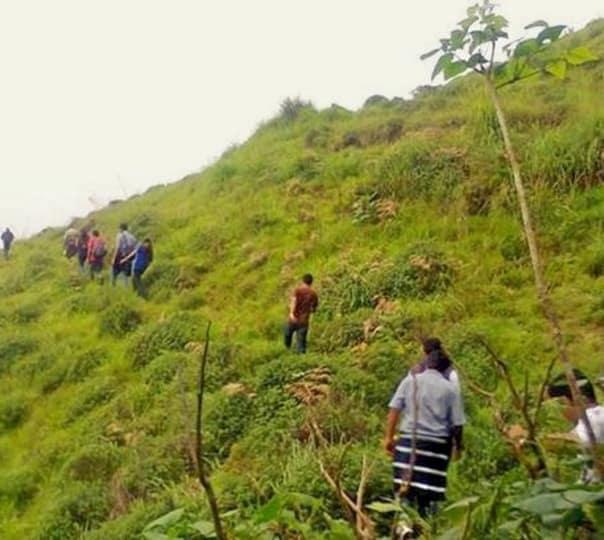 Grassland Trekking In Munnar