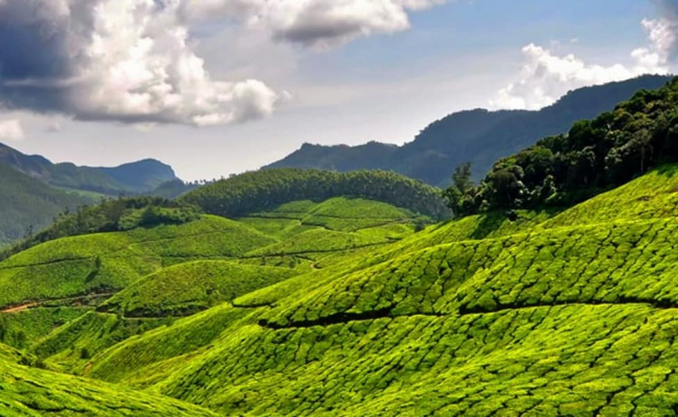 Tour The Hills And Backwaters Of Kerala Thrillophilia