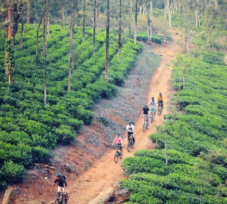 Cycling and Cave Camping in Wayanad