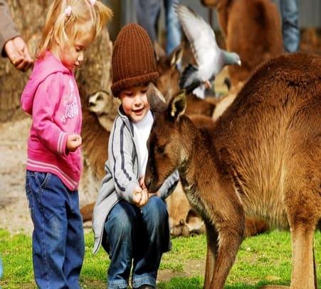 Sovereign Hill and Ballarat Tour in Australia