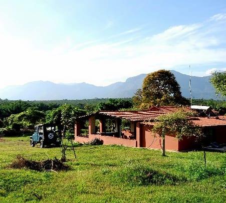 Night Stay at Mudumalai Eco Camp