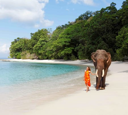 8 Days Andaman Tour with North Bay & Ross Island Trip