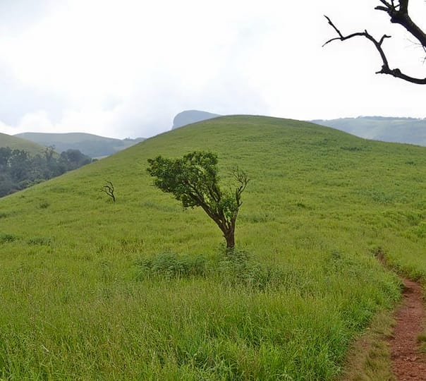 Trek to Kudremukh Peak