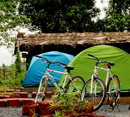 Camping in Wayanad's Jungle - Flat 29% Off