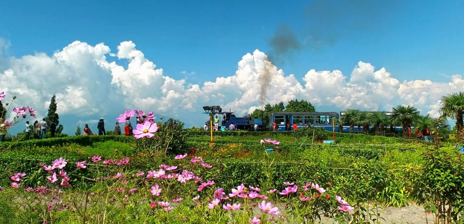 darjeeling tour 14 places to visit and things to do