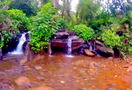 Kudremukh_trekking_trail__chikmagalur_(3)_027.jpg