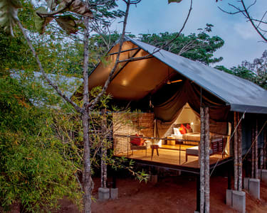 The Luxurious Kaav Safari Lodge at Kabini @ Flat 31% off