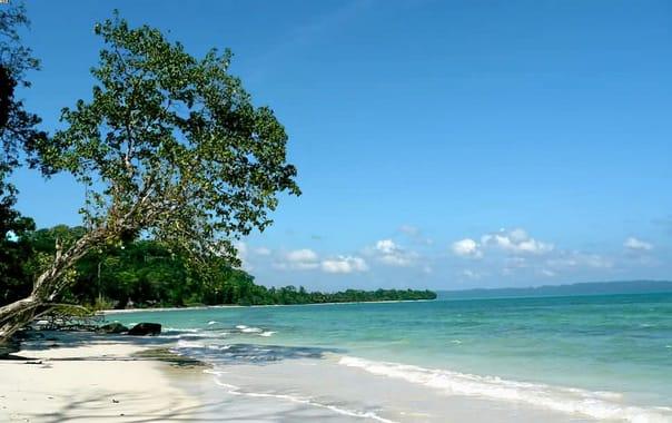 1488201568_kalapathar_beach.jpg