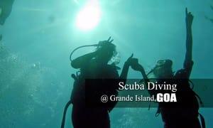 1481003769_scuba_dive_new.jpg