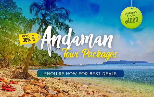 1531985891_andaman_tour_packages.jpg.jpg