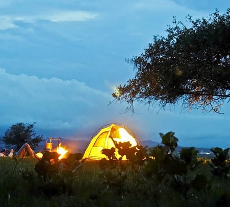 Bon Fire and Stargazing Experience in Wayanad